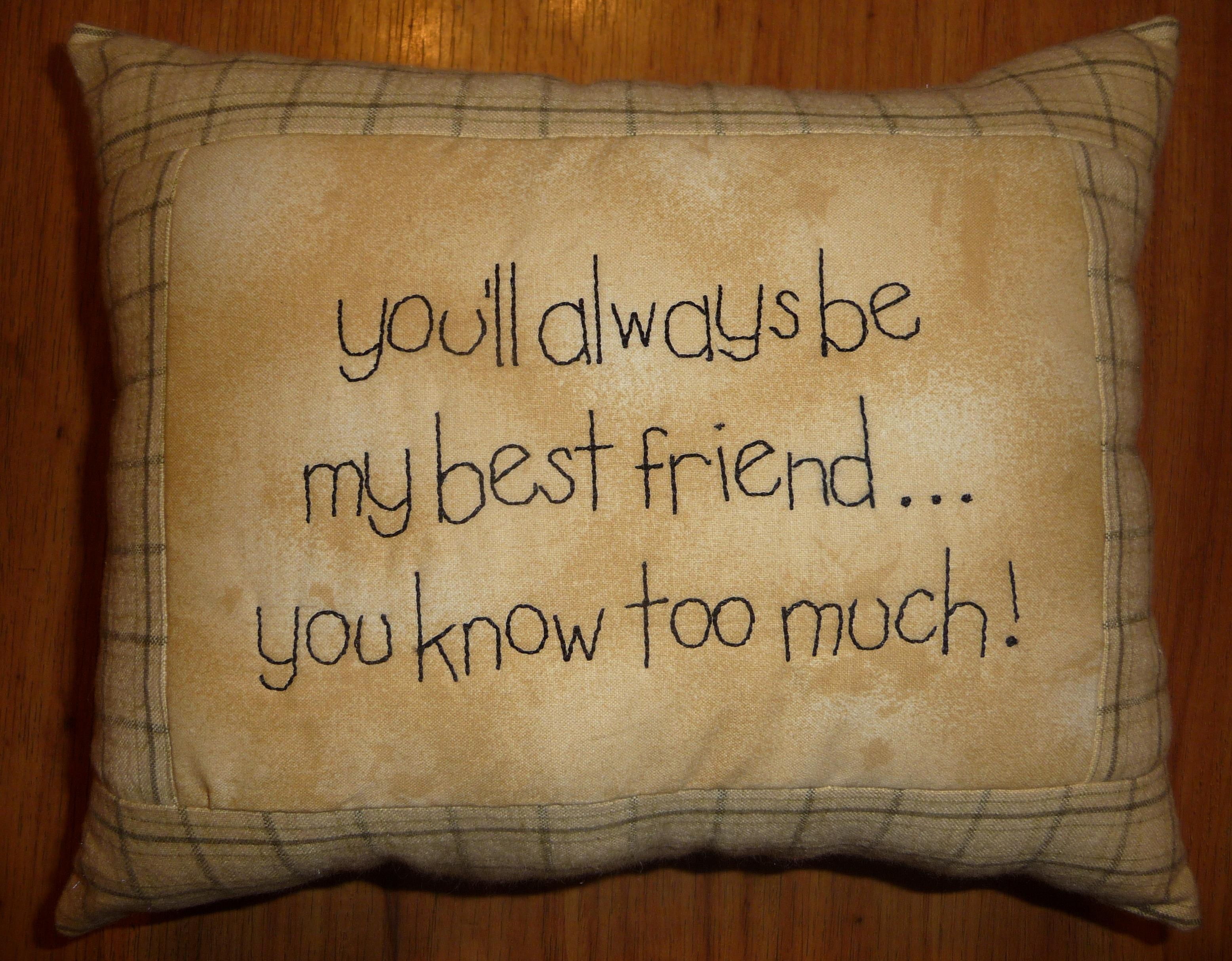 Best Friend Stitchery Pillow From Patchwork Amp Paint